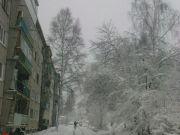 Зимняя картинка ноября!